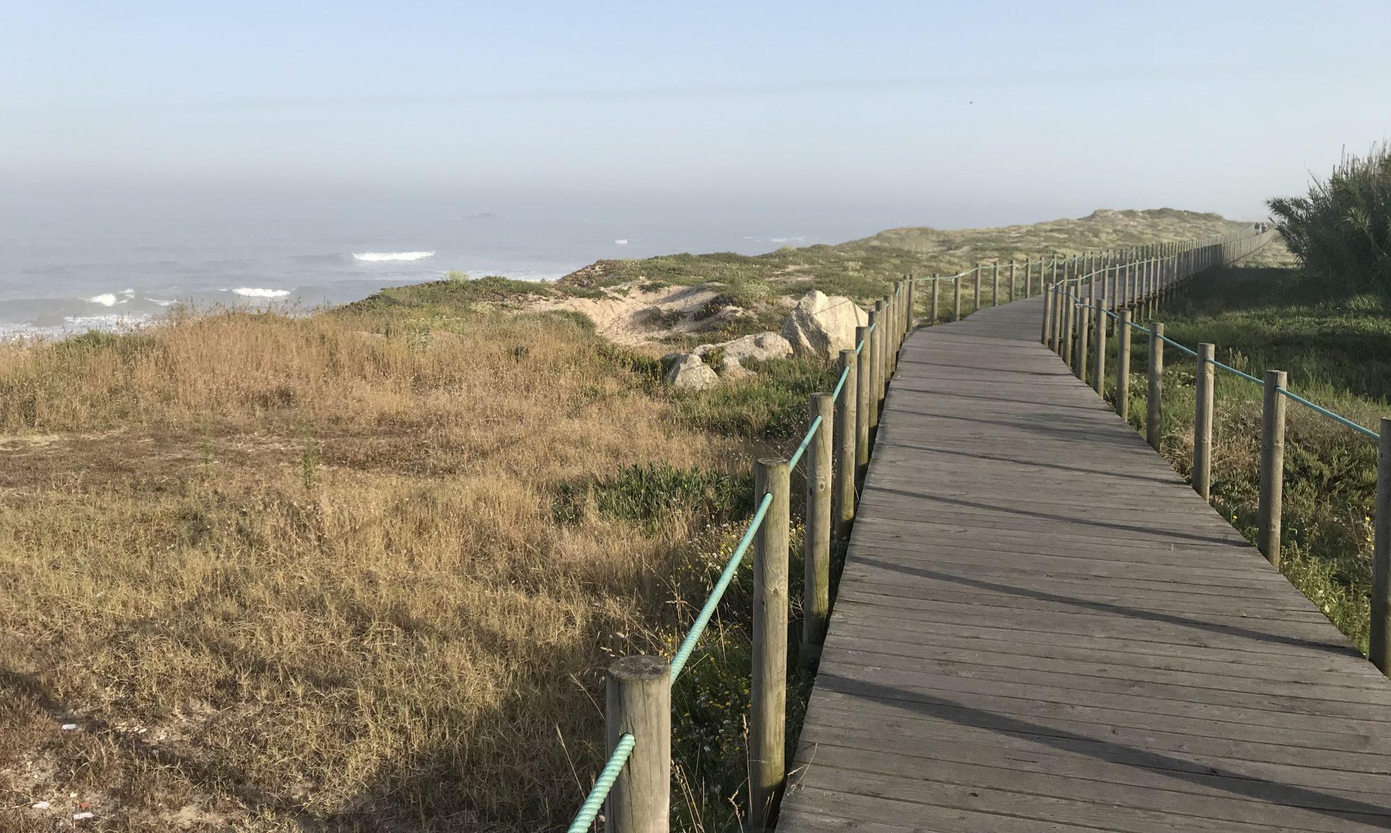 Mein Caminho - Auf dem portugiesischen Jakobsweg
